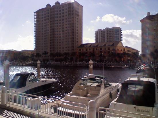 Tampa, FL: nice!