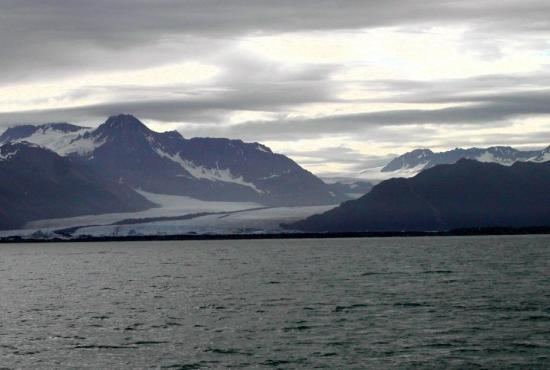 Major Marine Tours - Kenai Fjords Cruise: Bear Glacier