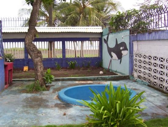 Tamarindo, Costa Rica: Beach house pool