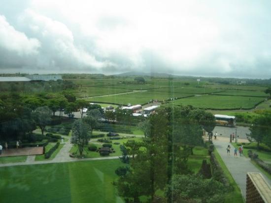 O'Sulloc Tea Museum: Osulloc Tea Museum