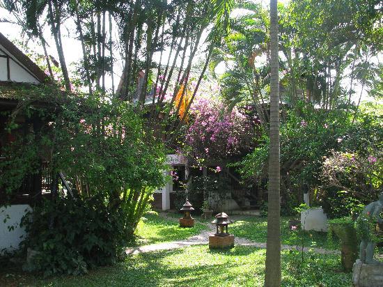 Secret Garden Chiang Mai: Il giardino