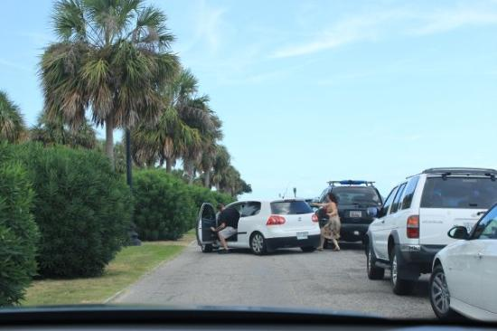 Bilde fra Charleston Waterfront Park