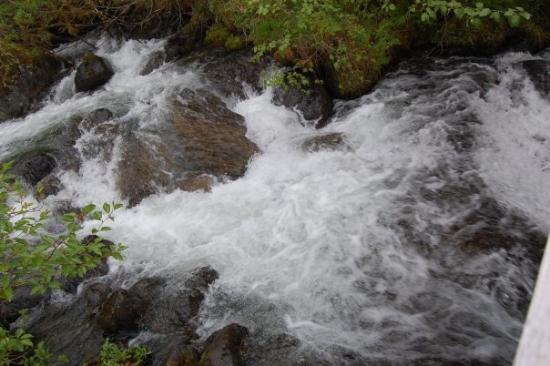 Juneau, AK: Trail of time