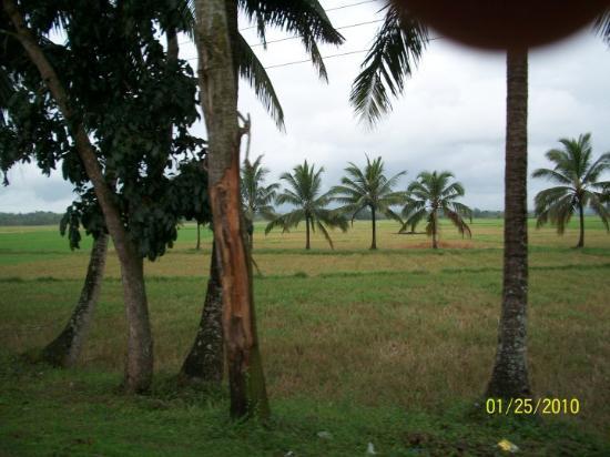 Roxas City Foto
