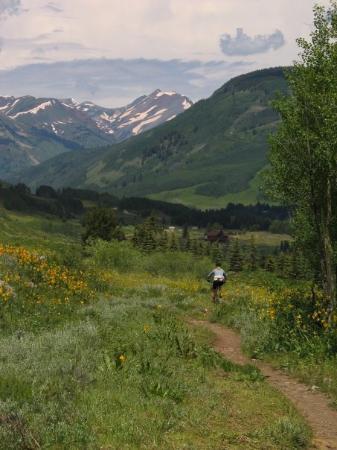 Crested Butte, CO: Mountain biking rocks in CB.