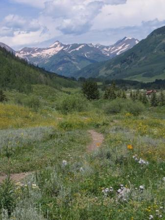 Crested Butte, CO: Trail to the rockies.