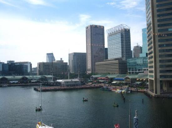 Baltimore Inner Harbor as seen from the snack bar