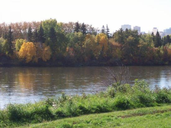 Edmonton, Canada: green grass, gold trees, calm waters