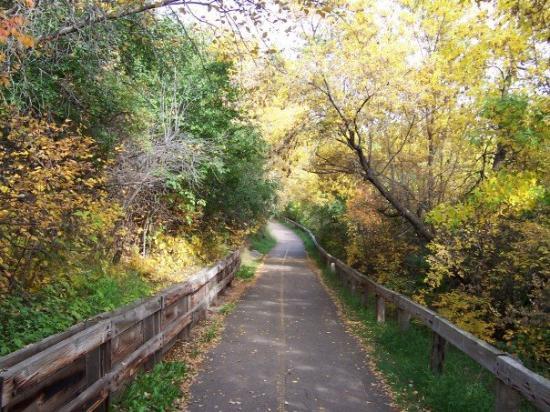 Edmonton, Canada: path near concodia