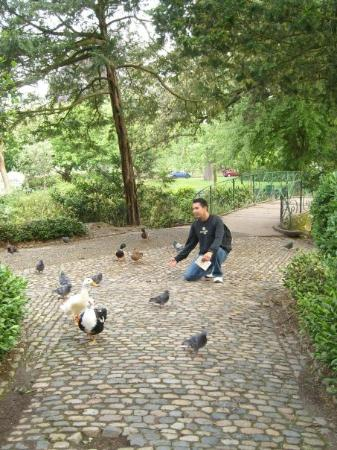 Toulouse, Frankrike: The lord of the birds....hahaha