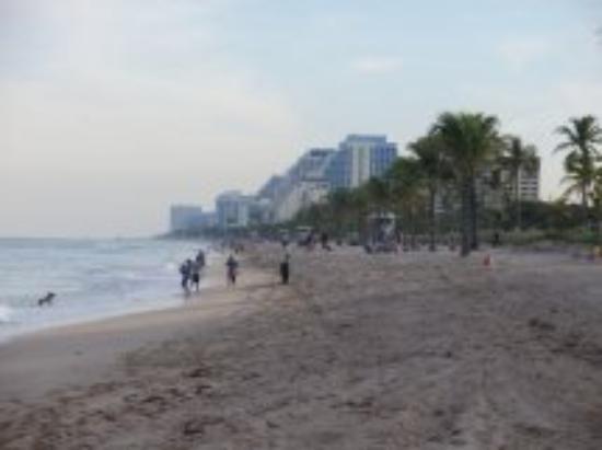 Fort Lauderdale, FL: pictures  Ft. Lauderdale Beach