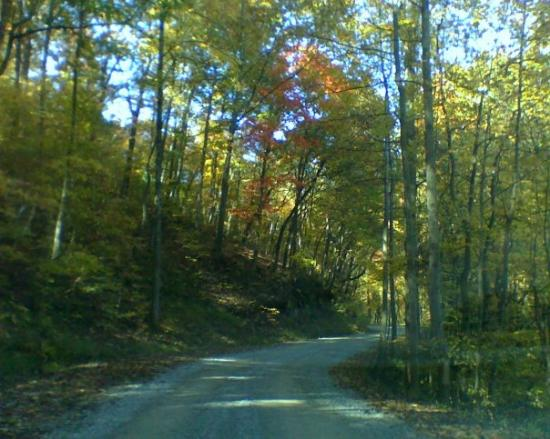 Turtletown, TN: Driving down our mountain road  Isn't it beautiful