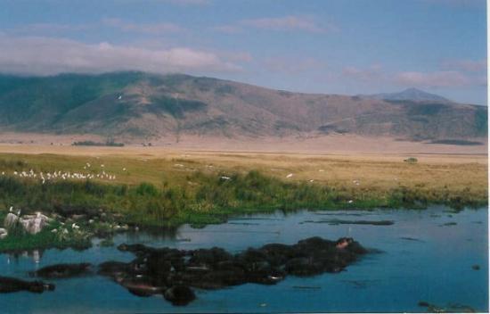 Ngorongoro Conservation Area, Tanzania: Ngorogoro crater, Tanzania, 2004