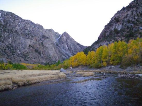 Mammoth Lakes, CA: Fall Colors @ Rush Creek
