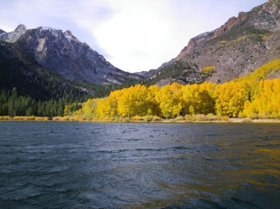 Mammoth Lakes, CA: Fall Colors @ Walker Lake