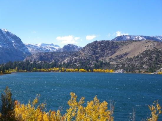 Mammoth Lakes, CA: Fall colors @ June Lake