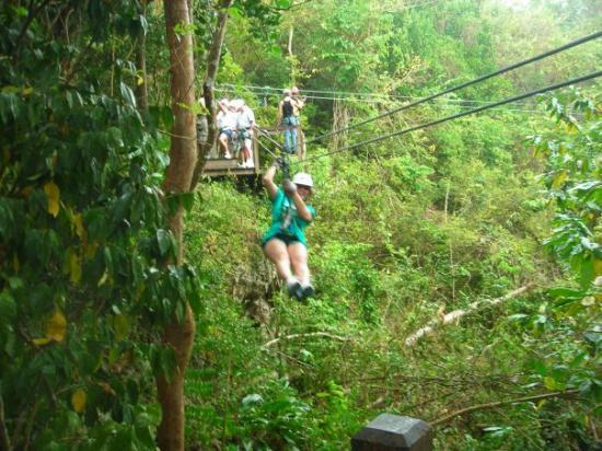 St. John's, Antigua: Barbados zipline, oh yeah!