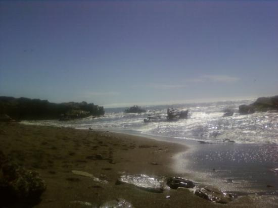 San Simeon State Park: had a good day at pismo...was fun
