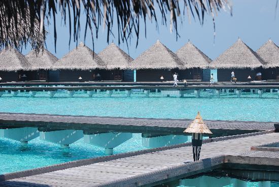 Taj Exotica Resort & Spa: Water Villas