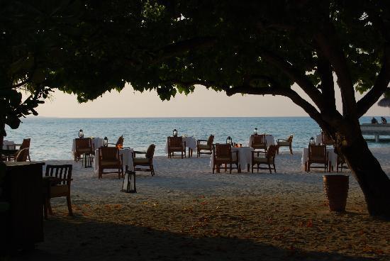 Taj Exotica Resort & Spa: Dinner on the Beach