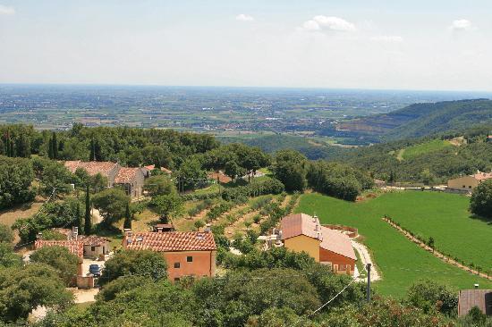 Monte degli Aromi: view