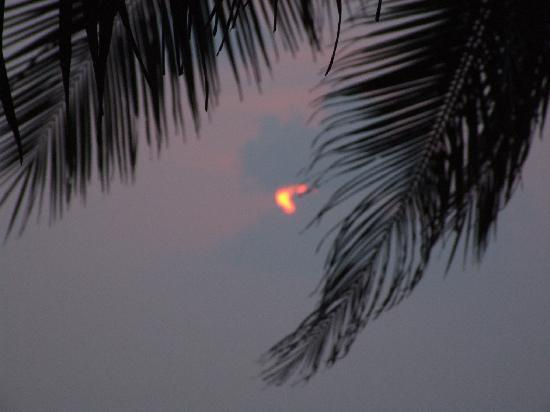 Palmleaves Beach Resort: coucher de soleil