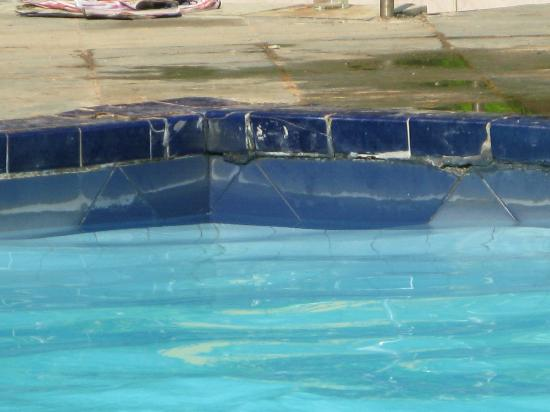 Club Palm Garden: Pool tiles