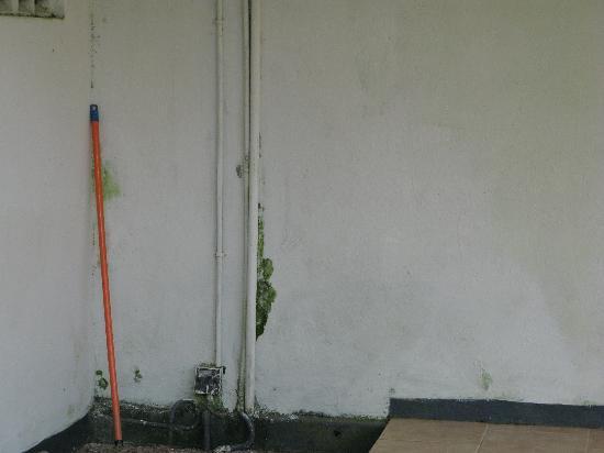 Club Palm Garden: Outside Pool Toilets