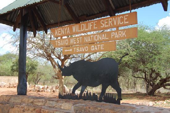 Tsavo East: elephants at tsavo west