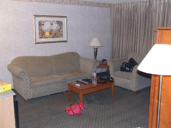 Hotel Rosedale: Living Area