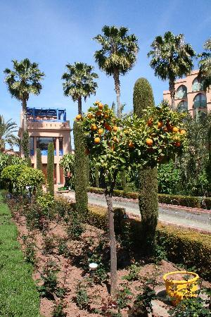 Le Meridien N'Fis: The hotel grounds....a lot to explore