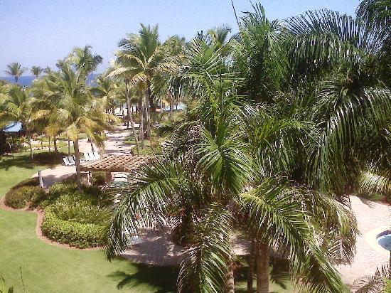 Hyatt Residence Club Dorado, Hacienda del Mar: Beautiful view taken with my Blackberry