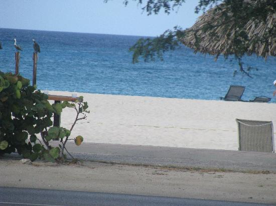 Divi Village Golf and Beach Resort: View of our room