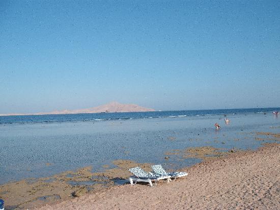 Charmillion Sea Life Resort: Di fronte l'isola di tiran