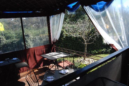 Willi's Wine Bar: patio area