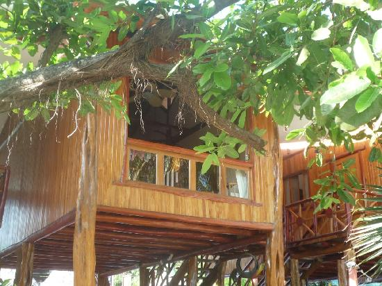 Samara Tree House Inn: la chambre