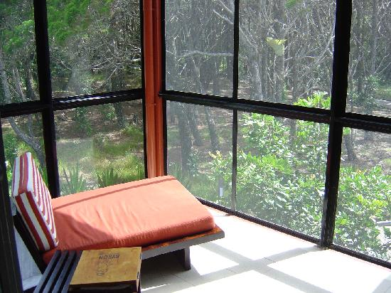 The Byron at Byron Resort & Spa: The back porch of our room was surrounded by rainforest