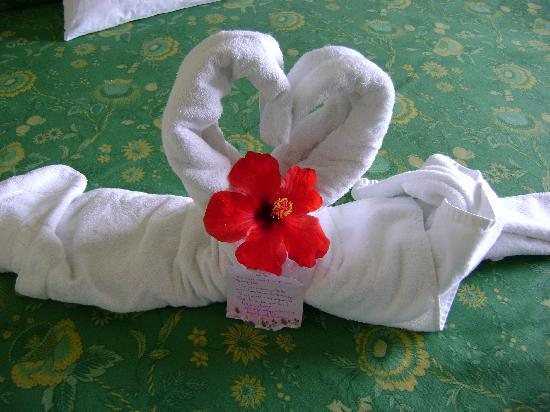 Iberostar Ensenachos: towel art