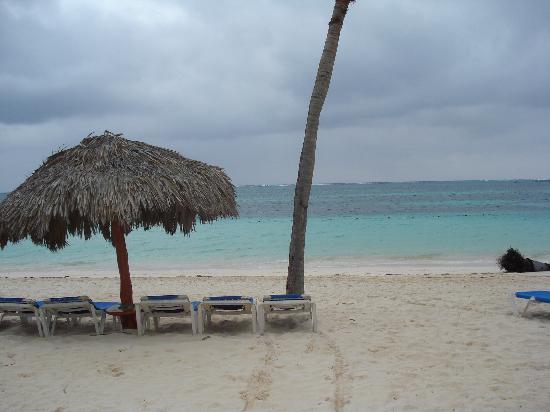 Natura Park Beach - EcoResort & Spa: Beach