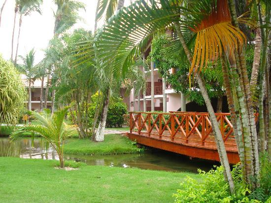 Natura Park Beach - EcoResort & Spa: Hotel grounds