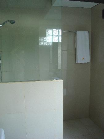 Aneka Lovina Villas & Spa: inside shower