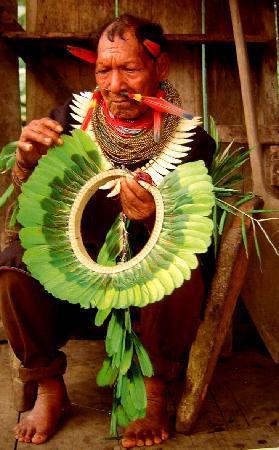 Manatee Amazon Explorer: Cofan