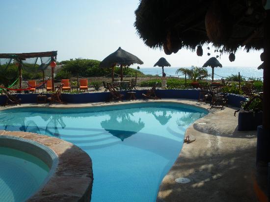Villa La Bella: Pool and grounds