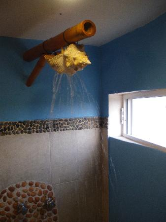 Villa La Bella: Conch Shell shower