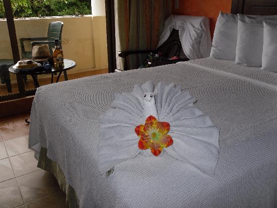 Occidental at Xcaret Destination: Chambres belles et très propres