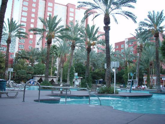 Flamingo Las Vegas Hotel & Casino: The biggest of the pools at the Flamingo