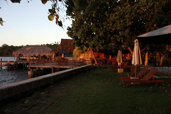Cocotinos Manado: piscina, terraza y embarcadero