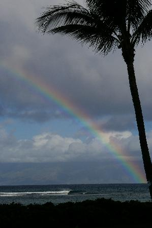 Valley Isle Resort: rainbow from lanai
