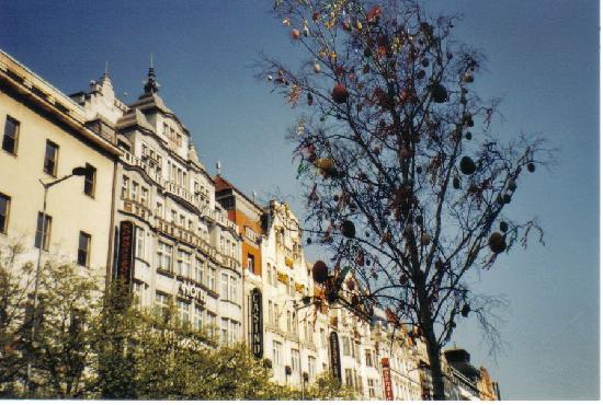 Praha, Tsjekkia: Wencesclas square