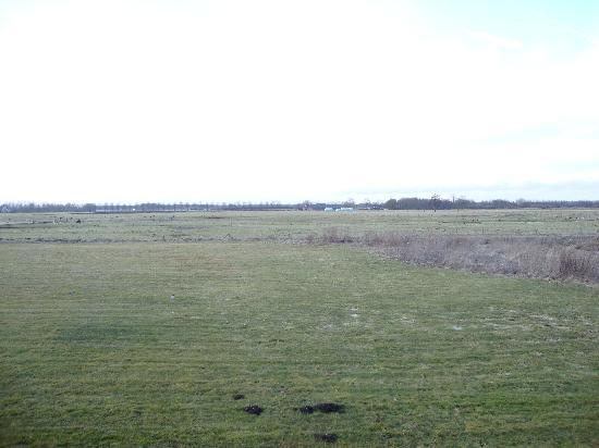 Van der Valk Hotel Groningen Westerbroek: What a view, 100% Holland